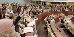 Das algerische Parlament stimmt dem Gesetz zu – ohne die Stimmen islamischer Parteien.