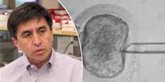 Shoukhrat Mitalipov: Sein Forscher-Team klonte die Menschen-Zellen